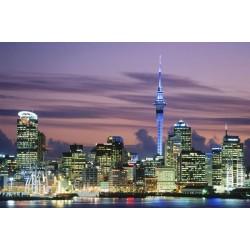 ข้อมูลเที่ยวประเทศนิวซีแลนด์ : โอ๊คแลนด์ ( Auckland )