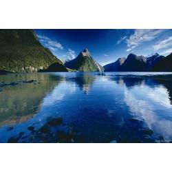 ข้อมูลเที่ยวนิวซีแลนด์ : โอบาราม่า ( OMARAMA)