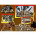 Best weekend at Safari Park Tour
