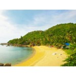 Coral Island Samui(PKG0955)