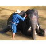 Around Thailand Bangkok and Chiang Mai package tour.6 Days 5 nights(PKG0989)