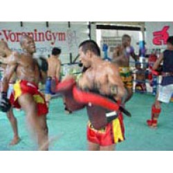 Thai Boxing Training with most popular gym in Thailand(PKG1019)