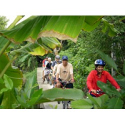 Half Day • Cycle Tour Bangkok(PKG1036)