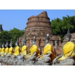 Cycle Tour of Historic Ayutthaya(PKG1061)