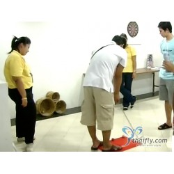 Thai Sekisui Foam Co., Ltd.