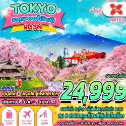 ทัวร์ญี่ปุ่น โตเกียว ชมซากุระ ฟูจิ ออนเซ็น ไหว้พระ ช้อปปิ้ง (TOKYO ซากุระพาเข้าวินส์) [MAR-APR] 4วัน 3คืน บิน AIR ASIA X