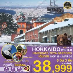 ทัวร์ญี่ปุ่น ฮอกไกโด ภูเขาไฟโชวะชิงซัง นั่งกระเช้า ร้านกาแฟ ฮัลโหล คิดตี้ ช้อปปิ้ง (PRO HOKKAIDO HAKODATE TOYA SAPPORO WINTER) [JAN-MAR] 5วัน 3คืน บิน THAI AIRWAYS