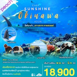 ทัวร์ญี่ปุ่น โอกินาว่า ช้อปปิ้ง (EASY SUNSHINE OKINAWA) [JAN-MAR] 4วัน 2คืน บิน PEACH AIR