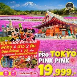 ทัวร์ญี่ปุ่น โตเกียว ชมพิงค์มอส ภูเขาไฟฟูจิ ออนเซ็น ช้อปปิ้ง (PRO-TOKYO ชมพู PINK PINK) [APR-MAY] 5วัน 3คืน บิน THAI LION AIR