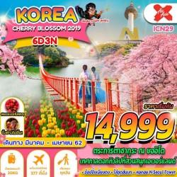 ทัวร์เกาหลี โซล ชมดอกซากุระ สวนสนุกเอเวอร์แลนด์ ช้อปปิ้ง (CHERRY BLOSSOM) [MAR-APR] 6วัน 3คืน บิน AIR ASIA X