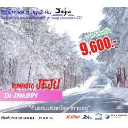 ทัวร์เกาหลี เกาะเชจู ไหว้พระ ช้อปปิ้ง (ROMANTIC JEJU IN JANUARY) [JAN] 4วัน 2คืน บิน JEJU AIR