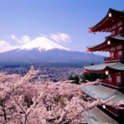 ตั๋วเครื่องบินไป โตเกียว | Tokyo Flights