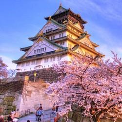 ตั๋วเครื่องบินไป โอซาก้า | Osaka Flights