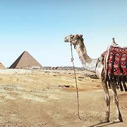 ข้อมูลเที่ยวอียิปต์ : ข้อมูลทั่วไปที่ควรทราบ