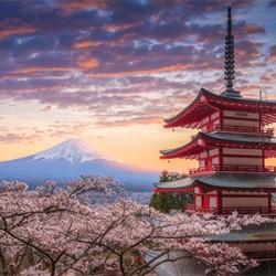 """ข้อมูลเที่ยวญี่ปุ่น : 5 สถานที่ท่องเที่ยวญี่ปุ่นที่ """"ห้ามพลาด"""""""