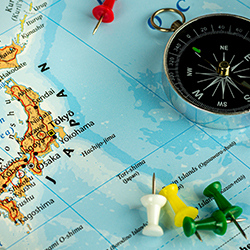 ข้อมูลเที่ยวญี่ปุ่น : The Fuji Shibazakura Festival ไปยังไง?