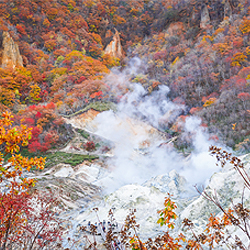 ข้อมูลเที่ยวญี่ปุ่น : จิโกกุดานิ หรือ หุบเขานรก