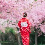 ข้อมูลเที่ยวญี่ปุ่น : 10 จุดชมซากุระ สุดฮิตทุกปี