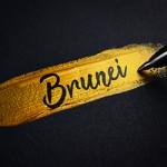 ข้อมูลเที่ยวบรูไน : ข้อมูลทั่วไปของประเทศบรูไน (General information of Brunei)