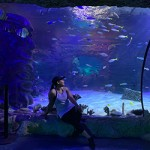 ข้อมูลเที่ยวจีน : CHIME-LONG OCEAN KINGDOM ที่ จูไห่ มีอควาเรียมนะ รู้ยัง?