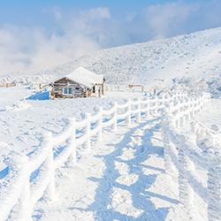 รีวิวเที่ยว กับทัวร์ Thaifly (Review Trip) : ปีใหม่นี้ไปหนาวกันที่เกาหลีกันเถอะ!!!