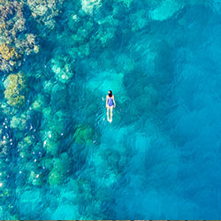 รีวิวเที่ยว กับทัวร์ Thaifly (Review Trip) : สัมผัสโลกใต้น้ำที่มัลดีฟส์