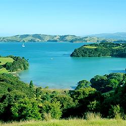 ข้อมูลเที่ยวนิวซีแลนด์ : เกาะไวฮีกิ (Waiheke Island)