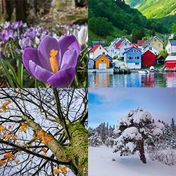 ข้อมูลเที่ยวนอร์เวย์ : นอร์เวย์มี 4 ฤดูคือ