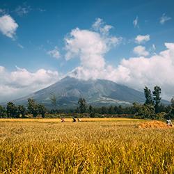ข้อมูลเที่ยวฟิลิปปินส์ : ภูเขามายอน (Mayon Volcano)
