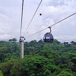 ข้อมูลเที่ยวสิงคโปร์ : Sentosa Luge & Skyride (LUGE ลูจ)