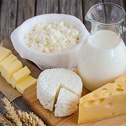 ข้อมูลเที่ยวสวิตเซอร์แลนด์ : อาหารที่ห้ามนำเข้าประเทศ