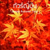 ทัวร์ญี่ปุ่น ฤดูใบไม้เปลี่ยนสี