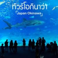 ทัวร์โอกินาว่า (Okinawa Tour)