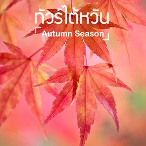 ทัวร์ไต้หวัน ใบไม้เปลี่ยนสี