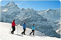 จัดกรุ๊ปทัวร์ออสเตรเลีย : เล่นสกีหิมะ