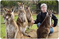 จัดกรุ๊ปทัวร์ออสเตรเลีย : ดูจิงโจ้ หมีโคอาล่า