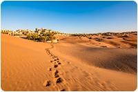 จัดกรุ๊ปทัวร์ดูไบ : ทะเลทรายอาบูดาบี