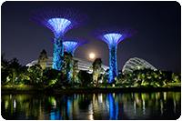 จัดทัวร์สิงคโปร์ : GARDEN BY THE BAY