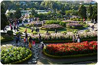 จัดทัวร์เวียดนาม :สวนดอกไม้ดาลัด