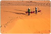 จัดทัวร์เวียดนาม : ทะเลทราย