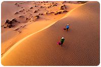 จัดกรุ๊ปทัวร์เวียดนาม : ทัวร์ทะเลทราย