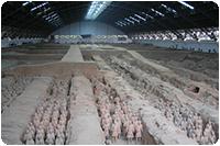จัดกรุ๊ปทัวร์ญี่ปุ่น : สุสานทหารม้าซีอาน
