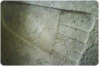 จัดทัวร์ศรีลังกา : เท้าสิงห์ สิกิริยา